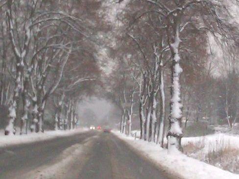 Meteorologen sagen Wintereinbruch für kommende Woche voraus