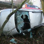 Baumstumpf in Fahrzeug gebohrt, Fahrerin verletzt