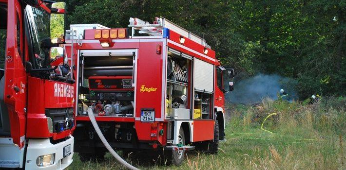 Feuer am Waldrand in Rheinen