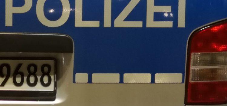Widerstand gegen Polizeibeamte, Geldbörse entwendet